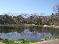 Rogers Pond