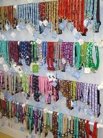 Dog Collars & Leashes at Scalawags